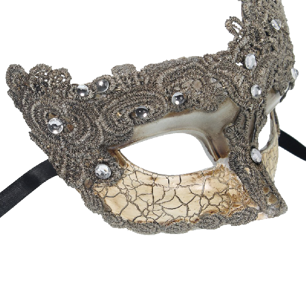 RedSkyTrader-Womens-Fancy-Lace-Mask-3